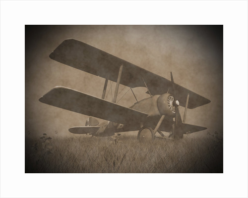 Vintage image of a biplane parked on the grass. by Elena Duvernay