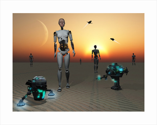 Androids and robots explore an alien world. by Mark Stevenson