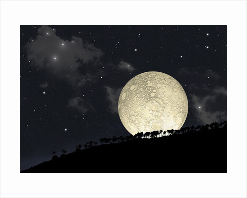 A full moon rising behind a row of hilltop trees. by Marc Ward