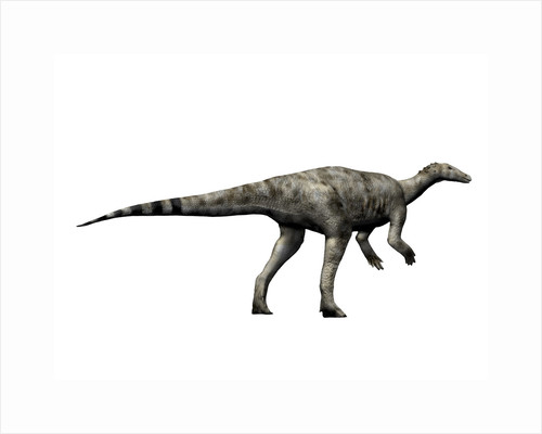 Thescelosaurus dinosaur by Nobumichi Tamura