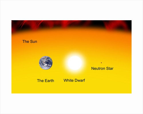 The Earth compared to the sun, a white dwarf and a neutron star. by Ron Miller