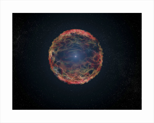 An artist's impression of supernova 1993J. by Anonymous