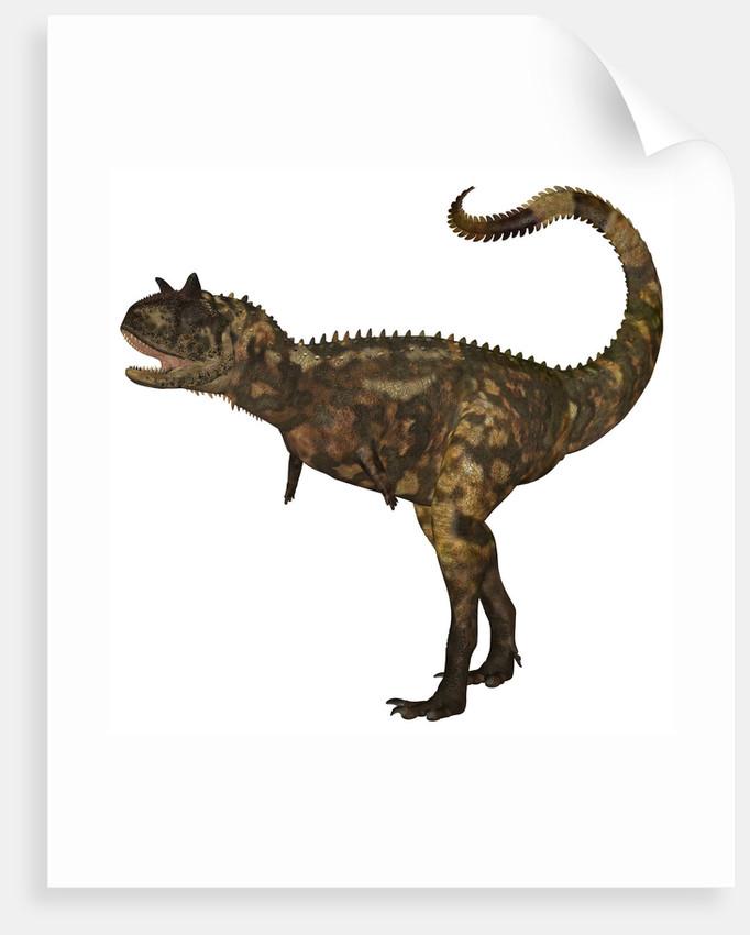 Carnotaurus dinosaur. by Corey Ford