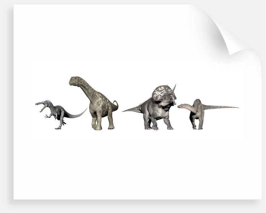 Left to Right: Suchomimus, Argentinosaurus, Zuniceratops, Dicraeosaurus. by Elena Duvernay