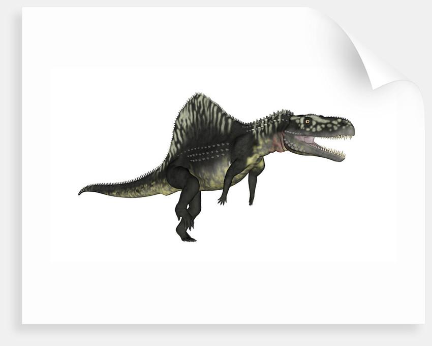 Arizonasaurus dinosaur. by Elena Duvernay