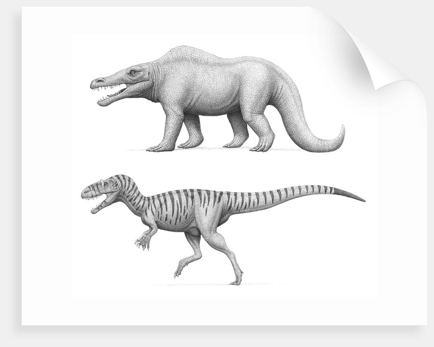 Artist's concept of Megalosaurus bucklandii, past and present. by Heraldo Mussolini
