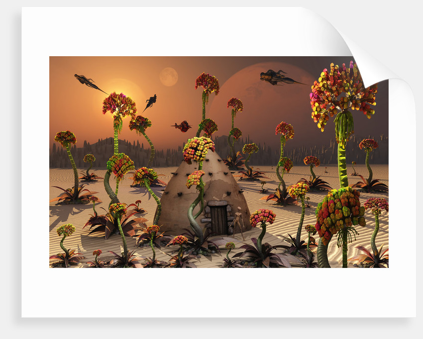 An alien landscape where the plants reach enormous sizes. by Mark Stevenson