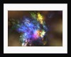 A colorful nebula in the universe. by Corey Ford