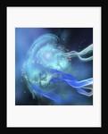 Blue Nebula by Corey Ford