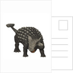 Ankylosaurus was an armored dinosaur from the Creataceous Period. by Corey Ford