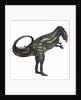 Allosaurus dinosaur. by Corey Ford