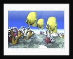 Two yellow butterflyfish swim among the sea anemone. by Corey Ford