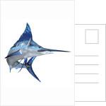 Blue Marlin by Corey Ford