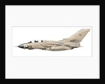 Illustration of a Panavia Tornado GR1 with Gulf War markings. by Anonymous