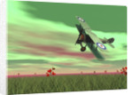 Vintage biplane flying above green grass with flowers by sunset. by Elena Duvernay