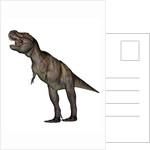 Aggressive Tyrannosaurus Rex growling, white background. by Elena Duvernay