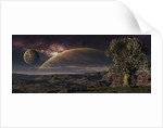 A lonely tree on an extraterrestrial world with a stunning view. by Frieso Hoevelkamp