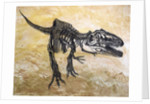 Giganotosaurus dinosaur skeleton. by Harm Plat