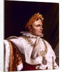 Digitally restored vector artwork of Napoleon Bonaparte. by John Parrot