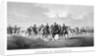 Vintage Civil War print of General Sherman and his Generals on horseback. by John Parrot