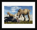 A pair of Tyrannosaurus Rex dinosaurs ready to make a meal of a dead Triceratops. by Mark Stevenson
