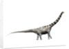 Argentinosaurus dinosaur. by Nobumichi Tamura