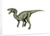 Gojirasaurus dinosaur. by Nobumichi Tamura