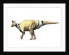 Lambeosaurus dinosaur. by Nobumichi Tamura