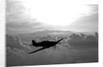 A Hawker Hurricane aircraft in flight. by Scott Germain