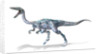 3D rendering of a Coelophysis dinosaur. by Leonello Calvetti