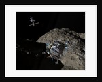 A manned Asteroid Lander descends toward the surface of an ancient asteroid. by Walter Myers