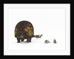 A Doedicurus glyptodont compared to modern armadillos. by Walter Myers