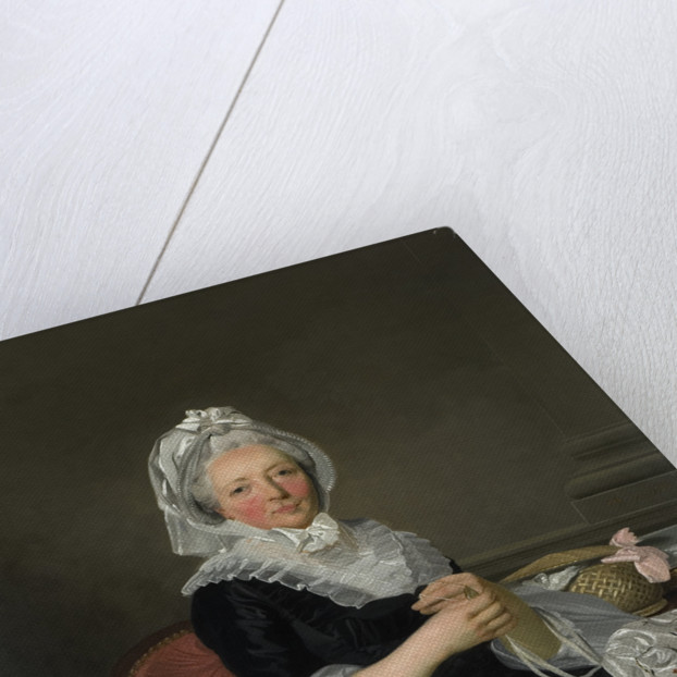 Portrait of Mrs. Pearce, 1786 by Francis Wheatley