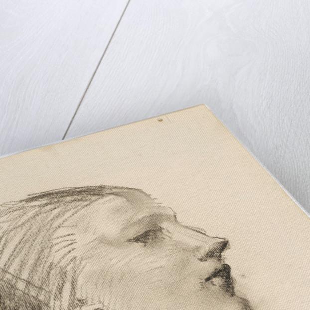 Portrait Profile Study by Robert Jackson Emerson