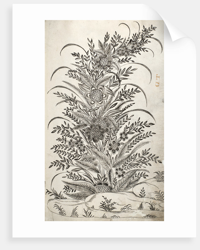 Pattern Book: Flower Design, 1688 by unknown