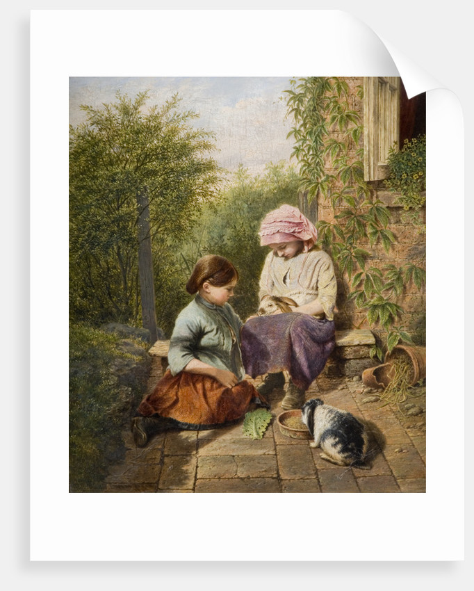 Pet Rabbits, 1875 by William H Ward