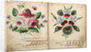 Pattern Book: Flower Design, 1875 - 1899 by unknown