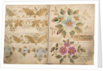 Pattern Book: Flower Design, 1875 - 1899 by unknown