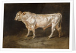Study of a Bull, 1811 by James Ward