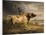 Bull, 19th century by Edmund Bristow