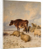 Cows and Sheep in Snowscape, 1864 by Thomas Sydney Cooper