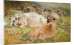 Cattle and Sheep, 1868 by William Huggins