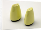 Gaydon ware salt and pepper pots made by Streetly Plastics, 1960s by unknown