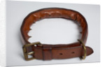 Spiked leather dog training collar by unknown